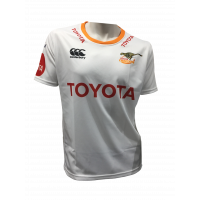 Cheetahs Currie Cup 2019 - Replica Jersey (New stock coming soon)